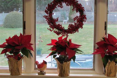 fensterbank außen günstig balkon dekor weihnachten