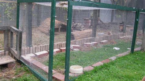 estrich matten operation sch 252 tzt die kaninchen kaninchen