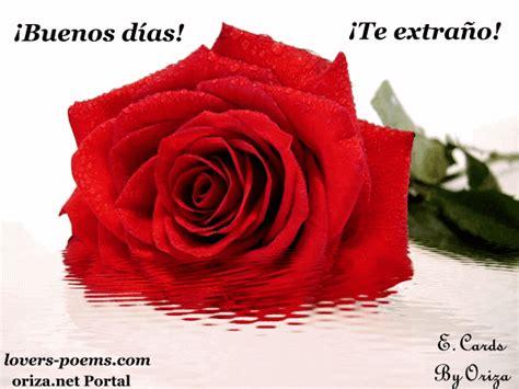 imagenes rosas buenos dias oriza net portal buenos d 237 as te extra 241 o