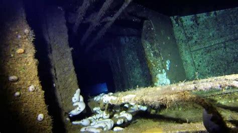 dive zenobia 35 best zenobia images on cyprus scuba diving