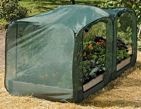 rabbit repellent for vegetable gardens rabbit repellent options in the garden