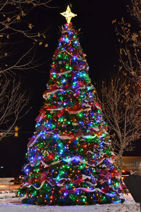 colored lights tree with multicolored lights