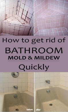 How To Get Mildew Out Of A Mattress by Bathroom Wall And Bathroom On