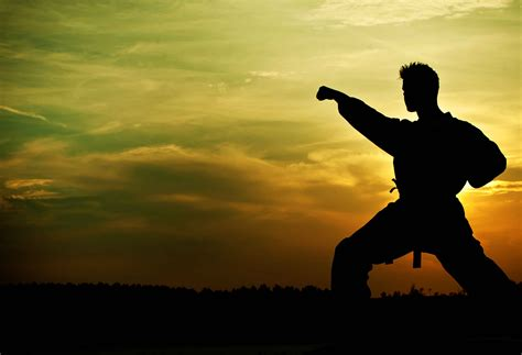 imagenes motivacionales de artes marciales artes marciales gong fu gongfu judo karate kung fu
