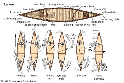 parts of a dragon boat stroke research towards canoes and reconciliation mcopeman
