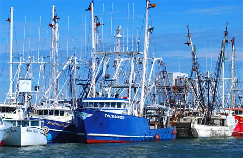 fishing boat nj commercial fishing cape may county nj official website