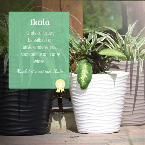 Mooie Planten Voor Binnen by Mooie Bloempotten Plantenbakken Voor Binnen En Buiten
