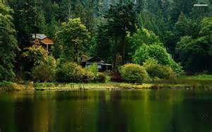 cabin at the lake side walldevil