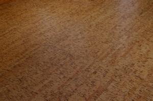 casa infestata da pulci come utilizzare borace in laminato a sbarazzarsi di pulci