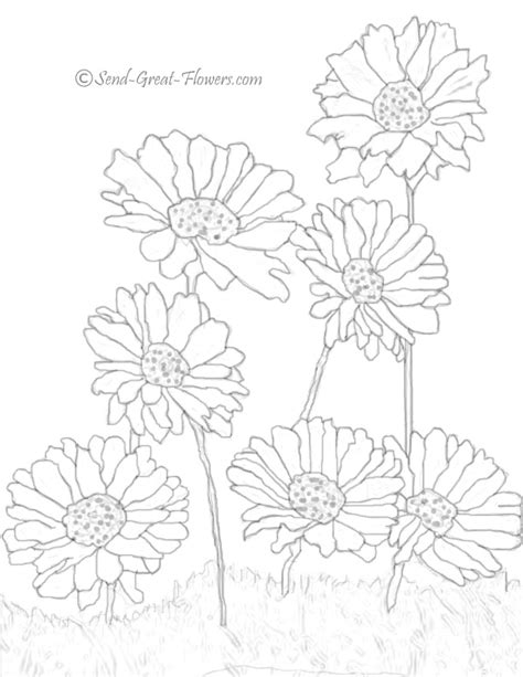 printable daisies flowers daisy flower coloring pages to see more free printable
