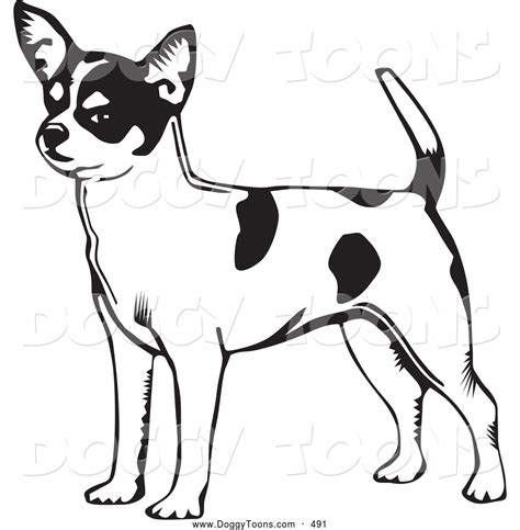 coloring page of chihuahua dog chihuahua coloring pages bing images dog patterns