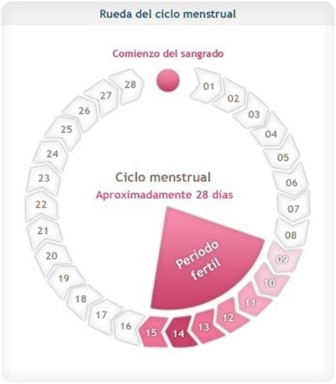 Calendario De La Mujer Calcular D 237 As F 233 Rtiles Blogmujeres