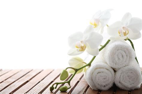 Spa Gift Card Toronto - spa specials at the spa at old mill toronto luxury spa in toronto