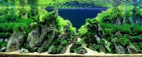 design aquascape karya maestro dunia part ii dunia akuarium