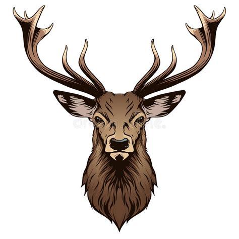 deer head stock vector illustration of black design