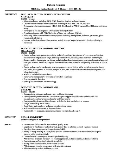 Scientist Resume by Protein Scientist Resume Sles Velvet