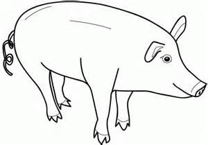 planse colorat fise pentru copii porcul planse colorat cu animale dmestice animale