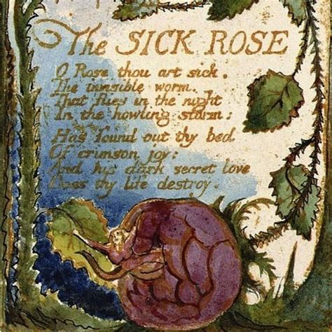 theme sick rose william blake the sick rose william blake uncategorized pinterest
