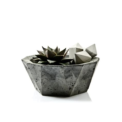 Concrete Bowl Planter by Geometric Concrete Bowl Pasinga Photographs Design