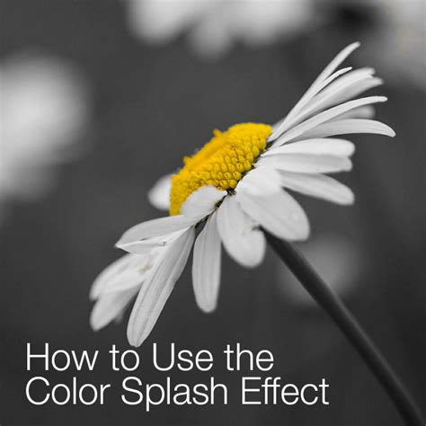 photoshop cs5 tutorial color splash effect color splash effect 28 images color splash effect