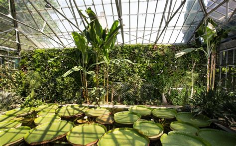 giardini verticali giardini verticali 171 cappellini giardinieri