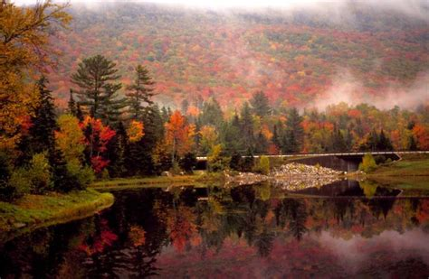 1000 images about autumnal scenes lake views on