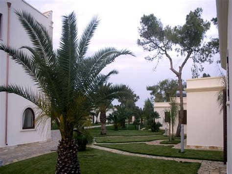 villa hermosa porto cesareo hotel villa hermosa resort porto cesareo