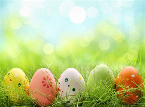 easter in 4 reasons to celebrate easter in the smoky mountains at a