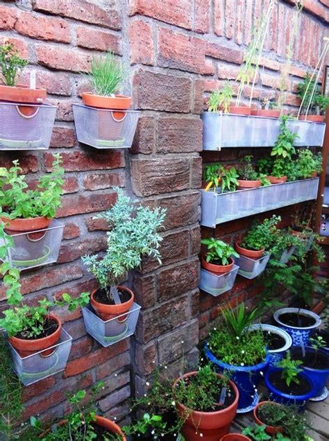 menciptakan ruang terbuka hijau di lahan sempit rumah