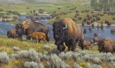 thomas wilkinson google earth blog 1000 images about buffalo are majestic on pinterest