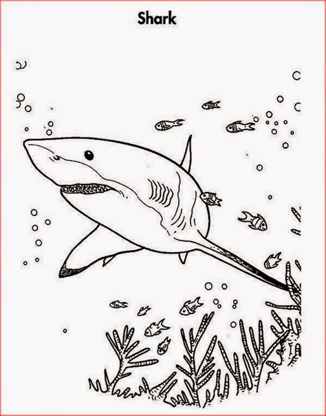 zombie shark coloring pages