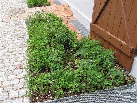 Garten Und Landschaftsbau Wismar by Goethe Schule Wismar Garten Und Landschaftsbau Crivitz Gmbh