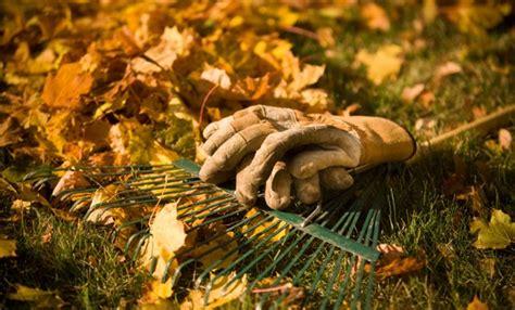 giardino in autunno giardino in autunno i lavori da fare per prepararlo all