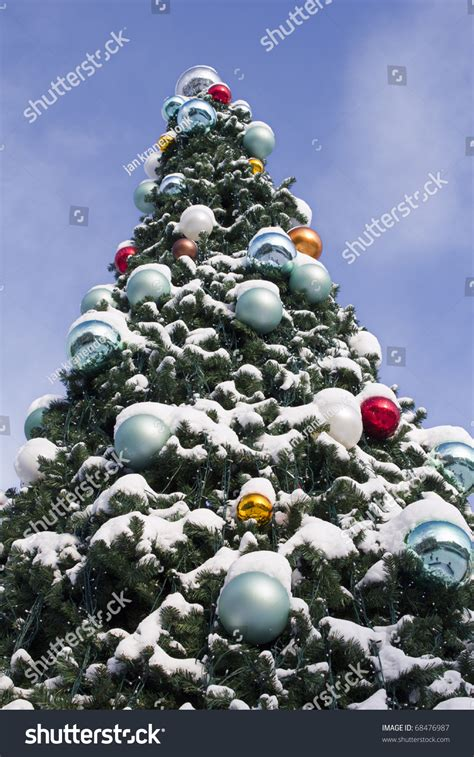 large tree balls large outdoor tree balls 28 images 6 pack 6 quot