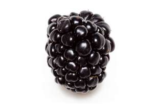 incredible weight loss benefits of blackberry fruit healthyrise com