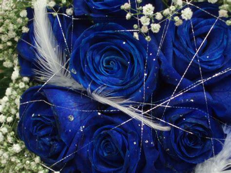 imagenes bellas brillantes en movimiento rosas azules hermosas y brillantes con movimiento imagui