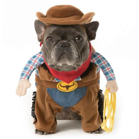 costumes for puppies costume ideas 32 easy costumes for your canine today