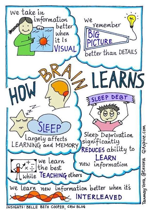 education scotland themes across learning 4893 best math education images on pinterest classroom