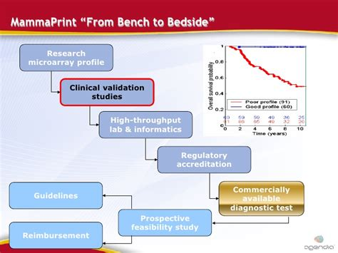 bench research mammaprint from bench to bedside