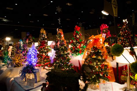 28 best living christmas tree knoxville knoxville