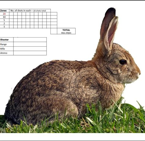 printable rabbit shooting targets rabbit shooting targets www pixshark com images