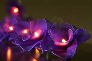 string of flower lights 20 purple flower battery powered led string