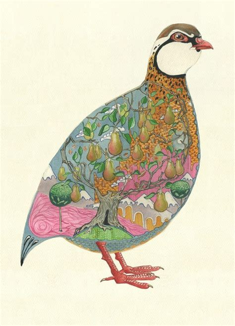 1000 ideas about partridge on pinterest bird ornaments