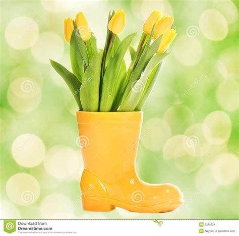 fresh tulips in yellow vase stock images image 7255324