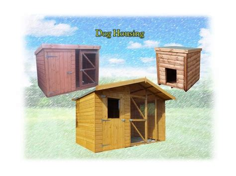 housing requirements for dogs dog housing theshedshop sky com free delivery within 20 miles