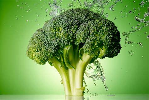 alimenti per difese immunitarie i migliori alimenti per rinforzare il sistema immunitario
