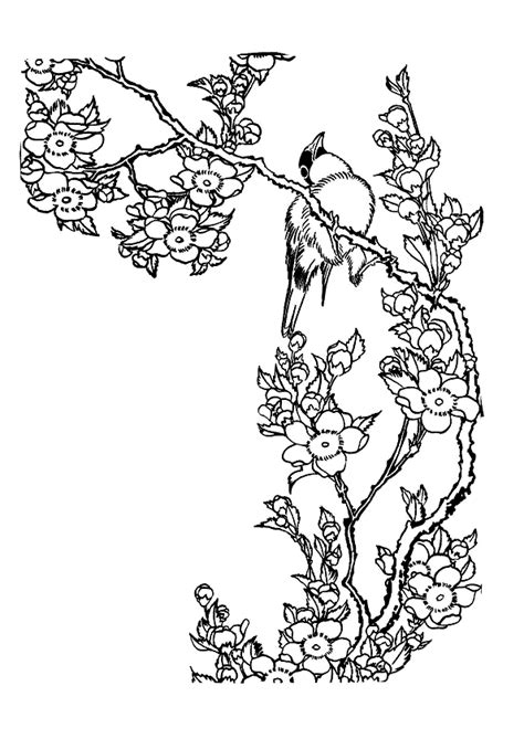 chinese garden coloring pages coloriage oiseau et fleur de cerisier hugolescargot com