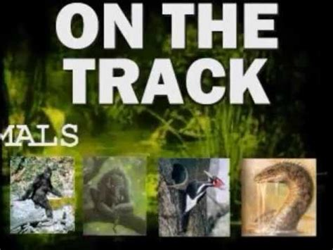 cryptozoology online: on the track (of unknown animals
