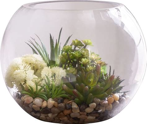 glass container gardening best 20 succulents in glass ideas on