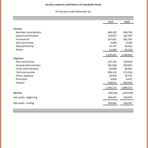income statement for non profit organization template 8 non profit financial statement template excel